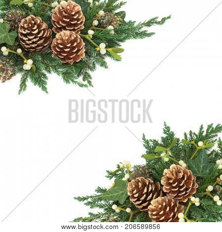 Christmas decorative background border with gold pine cones, ivy, mistletoe, cedar and juniper leaf sprigs over white.