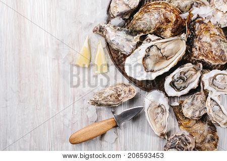 Raw open oyster, lemon, ice and knife on a light wooden background. Top view. Copy space.