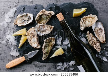 aw open oyster, lemon and a bottle of wine on a slate board. Top view