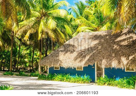 Blue wooden hat hidden beneath exotic high palm on a wild beach on a background of azure waters of the Caribbean Sea, Dominican Republic, Caribbean Islands, Central America