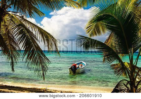 White motorboat moored on exotic coast with beautiful amazing palm trees entering the sea, Dominican Republic, Caribbean Islands, Central America