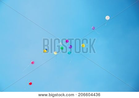 Many balloons of different colors are pumped with helium flying up into a clear blue sky in summer
