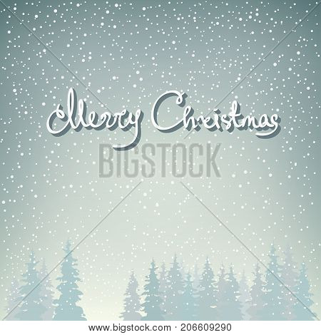 Snowfall in the Forest and Text Merry Christmas Fir Trees in Winter in Snowfall Christmas Winter Landscape in Gray Shades