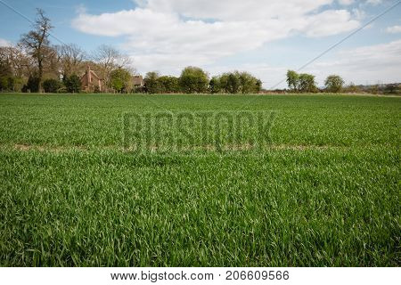 A Typical English Uk Green Countryside Landscape Mixed Land Use Woods And Farming