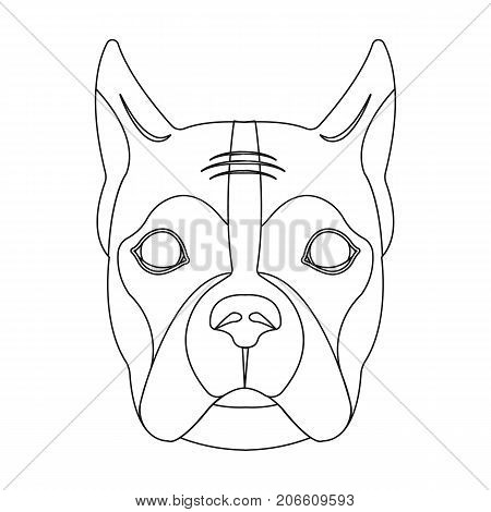 A dog, a breed of boxer.Muzzle of a boxer single icon in outline style vector symbol stock illustration .