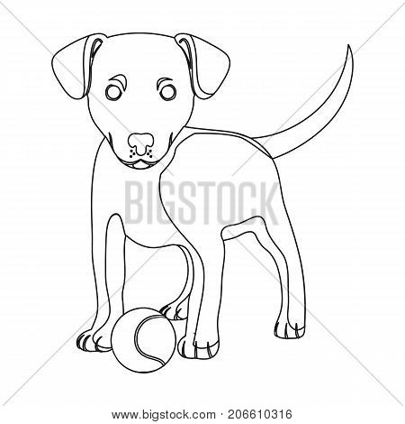 Pet, puppy dog with a ball. Pet, dog care single icon in outline style vector symbol stock illustration .
