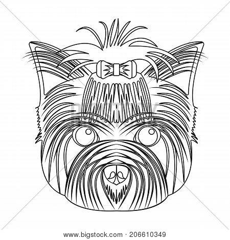 Muzzle of a pet, a hairdress dog with a bow. Pet, dog care single icon in outline style vector symbol stock illustration .