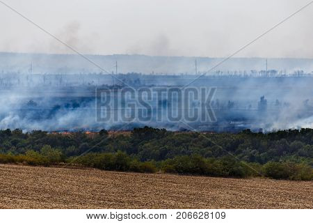 Wildfire in Rostov Region, grass in flame and fume, flame in wild nature or wildfire. Fields in big fire and smoke