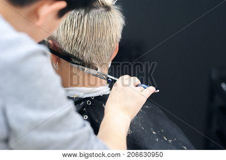 Women's Haircut. Hairdresser, Beauty Salon. Professional Hairdresser Making Stylish Haircut. Hairdre
