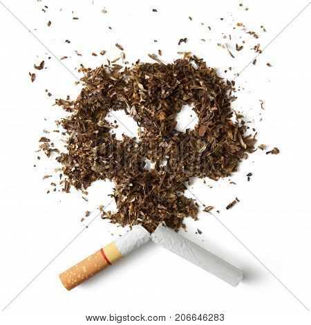 The broken cigarette and cranium made of tobacco isolated on white background .