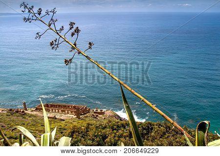 Sardinia Between Mountains And Sea - Riding Mountain Bike, View Of Laveria Lamarmora