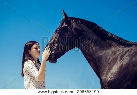 Young brunette beauty having fun with horse. Sunny day, blue sky as a background. Beautiful woman and black stallion. Portrait of a dark horse and pretty woman. Fashionable girl posing with a horse.