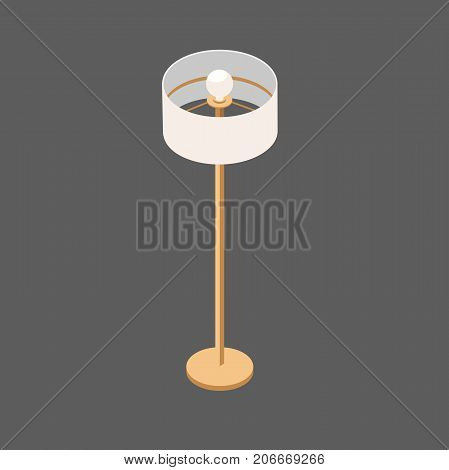 Floor Lamp on a Long Stalk. Floor lamp with Round Shade. Vector Lamp for the Living Room. Illustration of an isometric view in isolation from the background