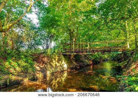 Wooden bridge over Beverley Brook at summertime, Wimbledon Common England