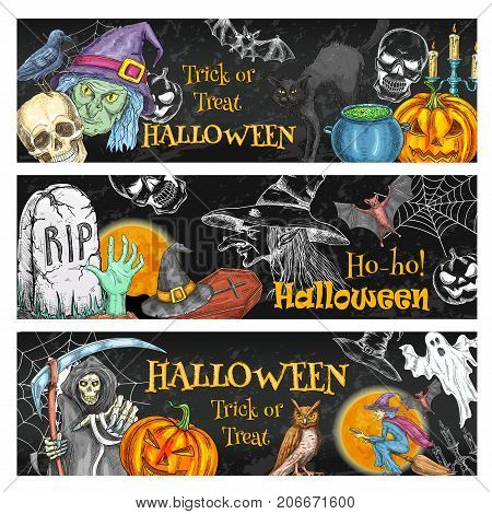 Halloween spooky night party sketch banner of october holiday scary symbols on chalkboard. Halloween pumpkin, witch, ghost and bat, spider web, skeleton skull, cemetery grave and zombie poster design
