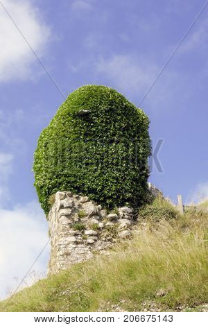 Remains of Corfe Castle / Wareham / United Kingdom