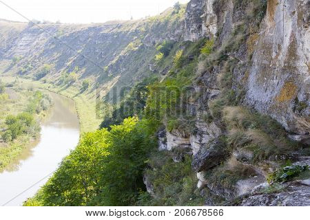 Dense greenery with rocks and a river with muddy water and high hills with trees on the slopes. Background on the verge.  close up landscape.