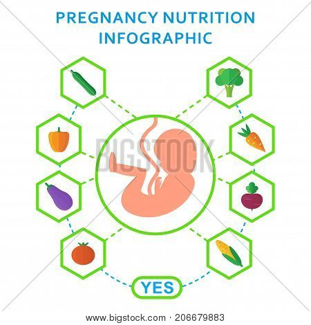 Pregnancy Embryo Nutrition Useful