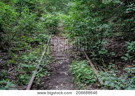 abandoned overgrown train tacks in the forest rusty