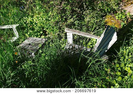Two adirondack chairs and a table in an overgrown garden hidden by weeds and tall grass. The late Spring sun casts long shadows.