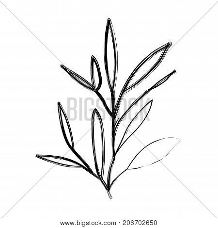 ramification with leaves on blurred silhouette vector illustration