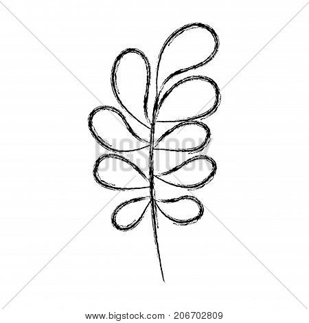 ramification with rounded leaves on blurred silhouette vector illustration