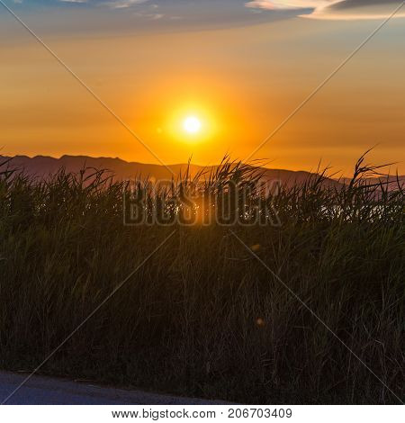 Sunset At The Mouth Of The Ebro Delta And Wetlands, Tarragona, Catalonia, Spain. Copy Space For Text