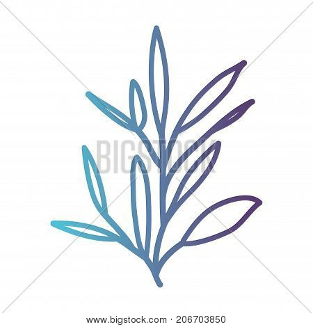 ramification with leaves on gradient color silhouette from blue to purple vector illustration