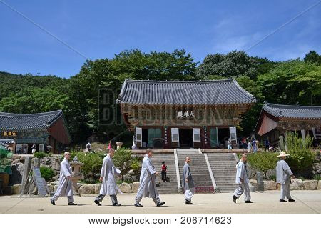 The Korean-buddhist Monks Walking In A Line. Pic Was Taken Around Beomeosa In August
