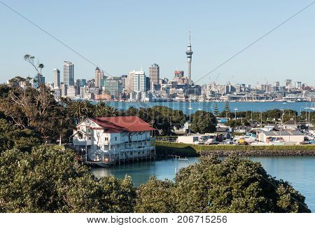 Auckland skyline with copy space, New Zealand