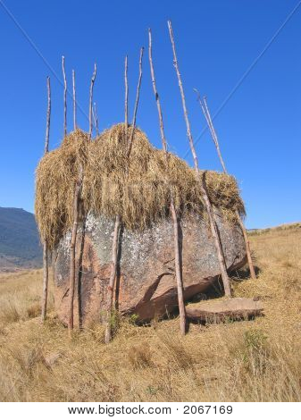 Hay Drying On A Rock