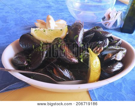 lemon mussel pepper lemon mussel pepper lemon mussel pepper