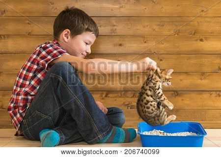 the boy teaches the little kitten walking in a tray on wooden background wall