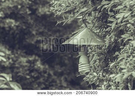 Vintage lamp hanging on green branch trees at outdoor garden in vintage style.
