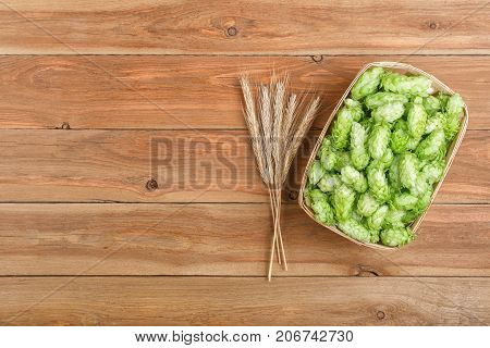 fresh green hops in basket and ears of wheat on wooden table with copy space top view. Hop cones for beer. Ingredients for brewing
