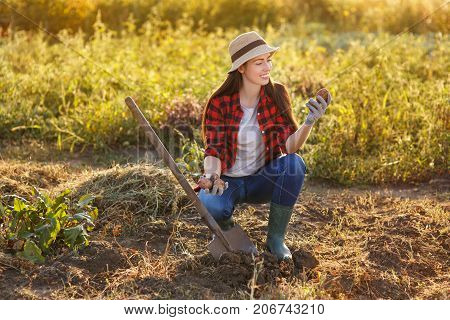 portrait of happy young woman gardener with potatoes in garden. Young farmer harvesting potato. Gardening, agriculture, autumn harvest concept