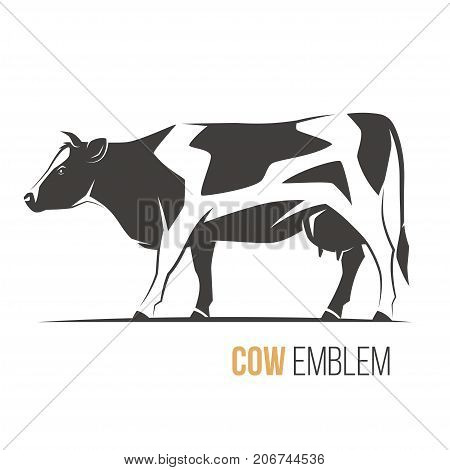 Vector illustration of a stylish spotted holstein cow. Emblem logo label design.