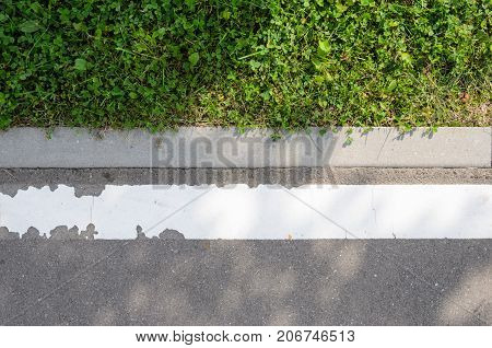 Asphalt Road with White Marking Strip and Lawn Texture. Texture of the Road Surface Element with Adjacently Pavement Curb Stone and Green Lawn