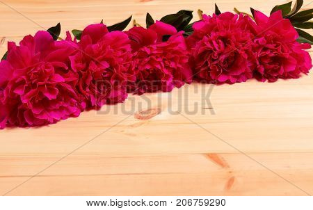 Floral border with red peonies on wooden background