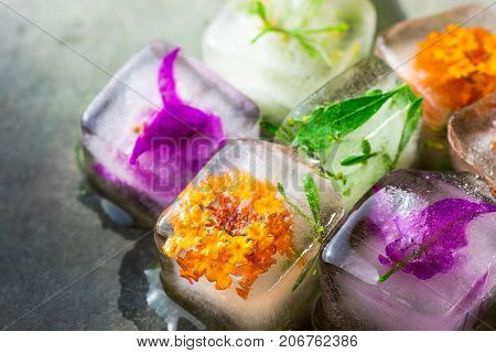 Homemade Ice Cubes with Frozen Herbs Plants Flowers Facial Skin Care Beauty Spa Anti Aging Concept Black Stone Background Copy Space