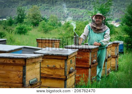 Beekeeper in an apiary near the hives. Apiculture. Apiary