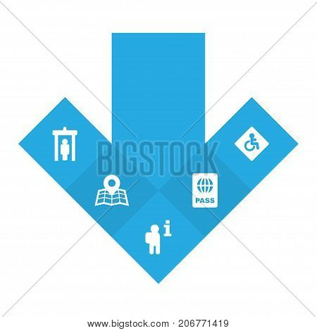 Collection Of Handicap, Data, Passport Elements.  Set Of 5 Plane Icons Set.