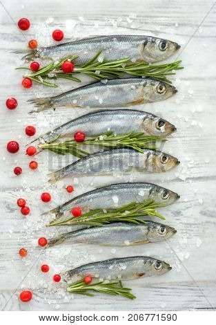 Fresh Raw Fish Baltic Herring On A Table With Fresh Herbs And Cowberry
