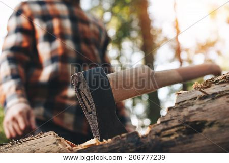 Ax Sticks Out In Felled Tree In Forest, A Blurred Lumberjack In The Background