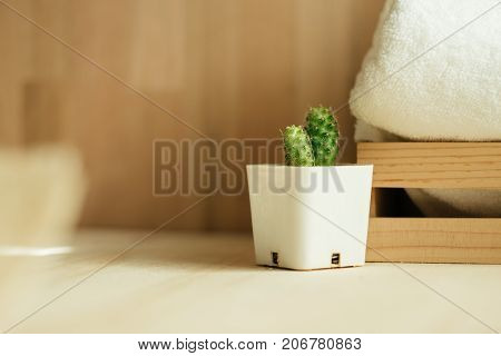 Front View. Small Plant In Vase Placed Beside Wood Basket With White Towel. Wood Wall Are Background