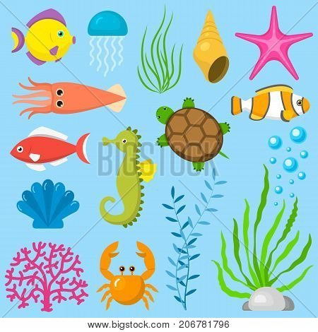 Set aquatic funny sea animals underwater creatures cartoon characters shell aquarium vector illustration. Beach nature sea bowl elements sealife.