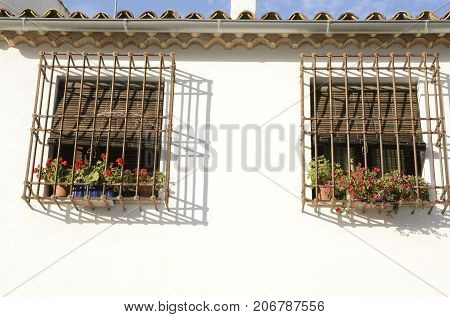 Flowers on grille windows on white house in the village of Belmonte province of Cuenca Spain.