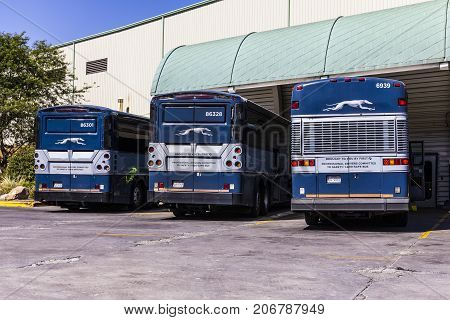 Indianapolis - Circa September 2017: Greyhound Buses. Greyhound offers Inter-City Service to over 2700 Destinations II