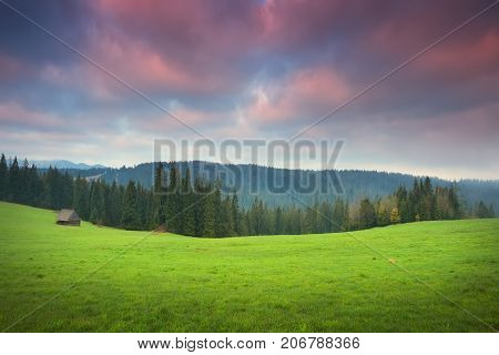 Green meadow in the morning. Colorful morning clouds over green valley at the sunrise. Alpine hills in morning sunlight. Summer background with green grass and colorful clouds.