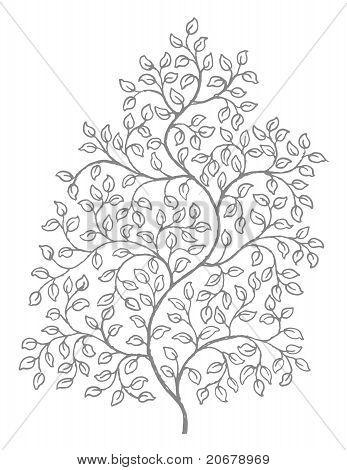 Ornate, elegant curly vines illustration